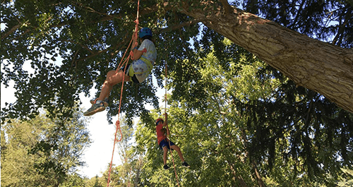 Recreational Tree Climbing Instruction in DC/MD/VA - https://www.go-adventures.com/adventure-instruction/tree-climbing/